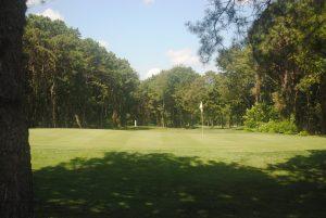 Lions Head South Golf